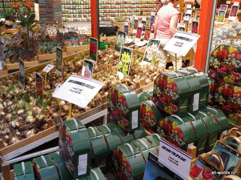 Привезти подарки из амстердама 661